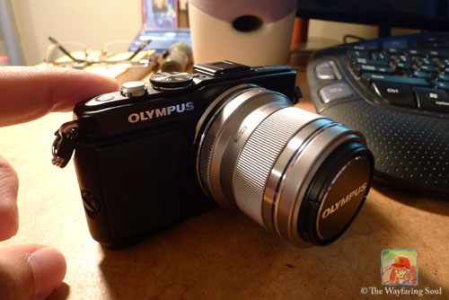 The Oly EPL5 and Zuiko 45mm f1.8...