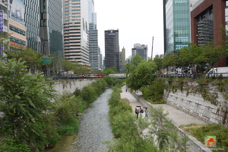 Checking Out Cheonggyecheon Stream in Seoul