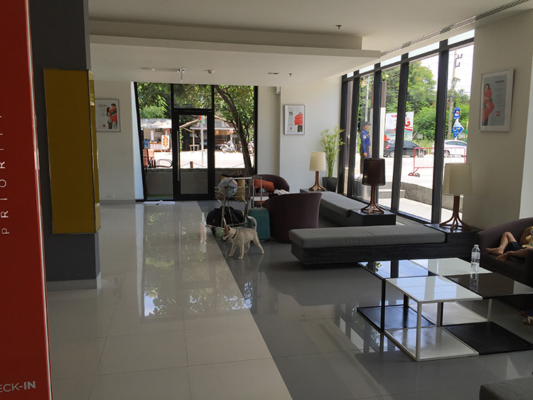 Ibis is a very pet friendly hotel in Hua Hin...