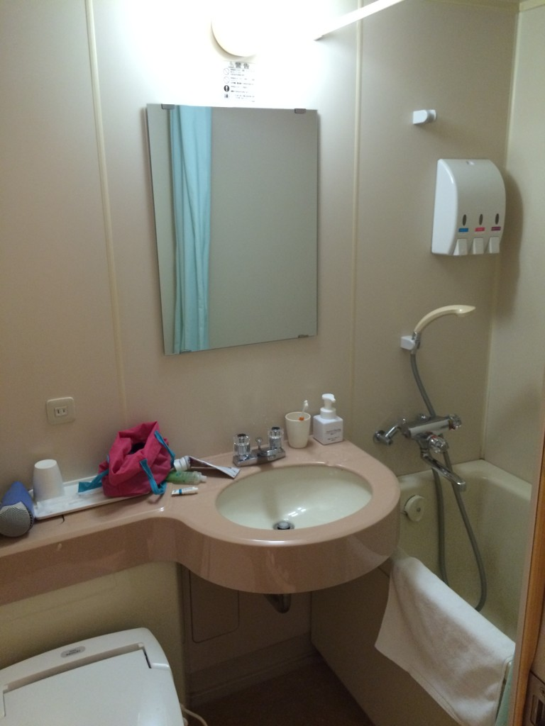 THe bathroom... small but functional...